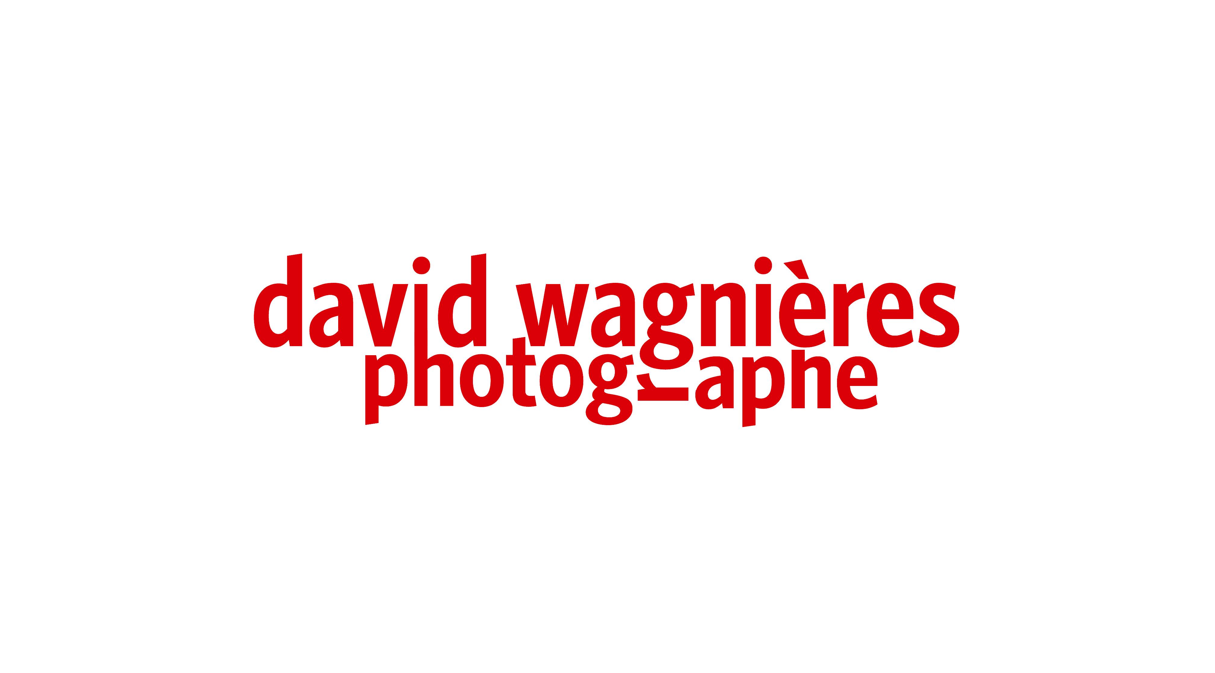 logo_david_wagnieres